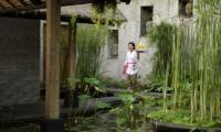 Villa Maya Retreat Lawns   Tabanan, Bali