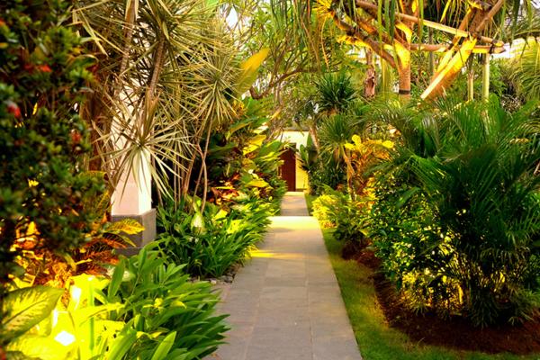 Villa Sally Garden Area | Canggu, Bali