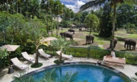 Elephant Safari Park Lodge Over View I Ubud, Bali