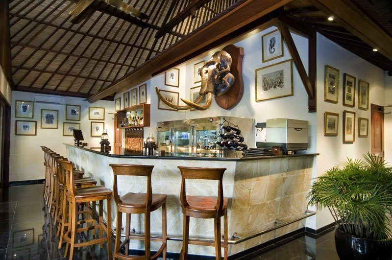 Elephant Safari Park Lodge Bar I Ubud, Bali