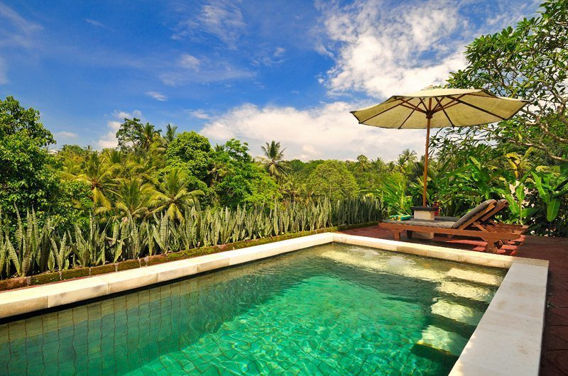 Villa Semana Swimming Pool I Ubud, Bali