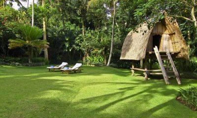 Lotus Residence Tree House | Tabanan, Bali