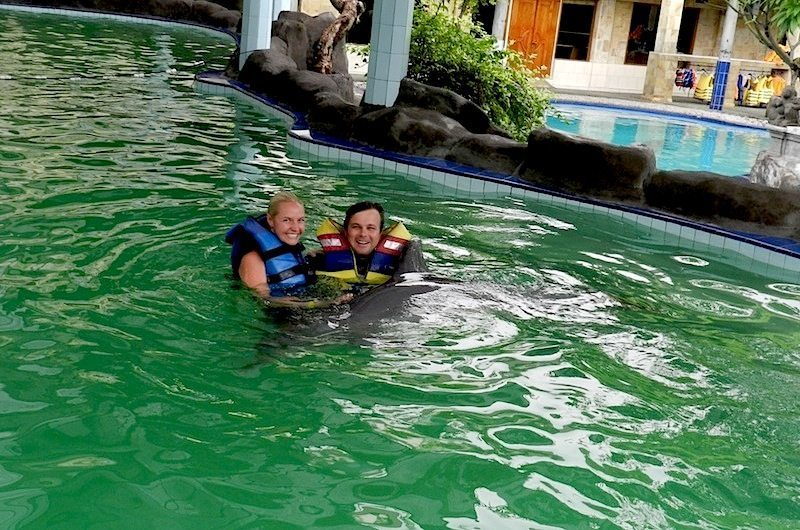 Swimming with the Dophins in Bali