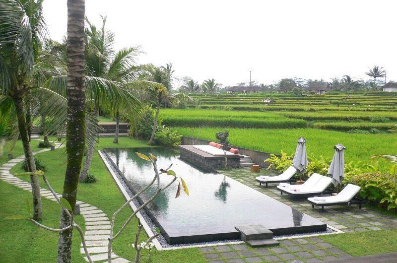 Villa Amala Swimming Pool   Ubud, Bali