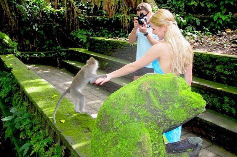 Bali Exploring Monkey Forest Ubud