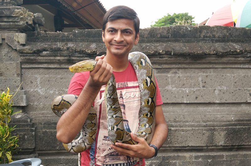 bali-tanah-lot-temple-snake
