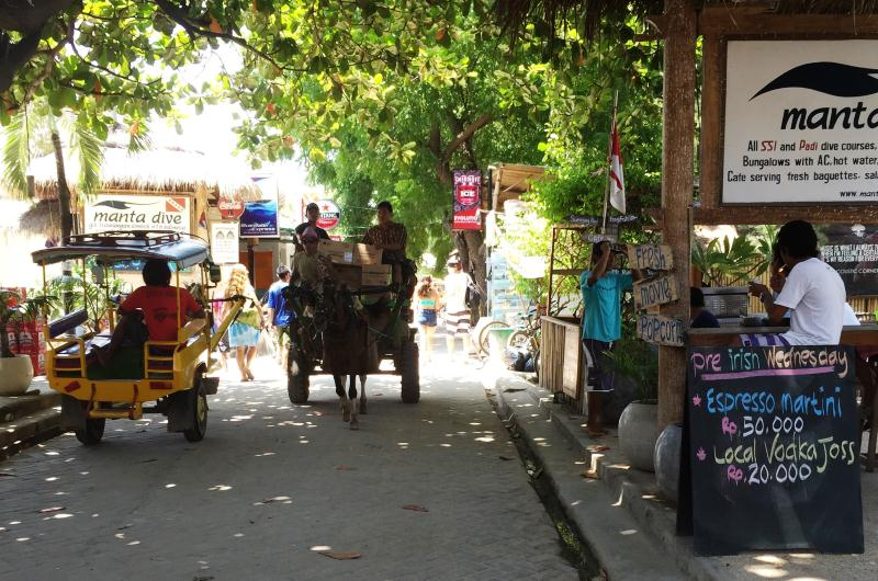 Horse Carts on Gili Island
