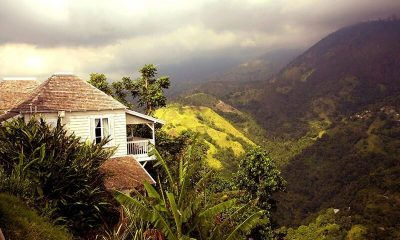Strawberry Hill Mountain View | Jamaica