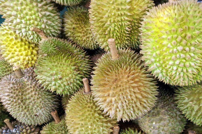 Durian Exotic Fruit Bali