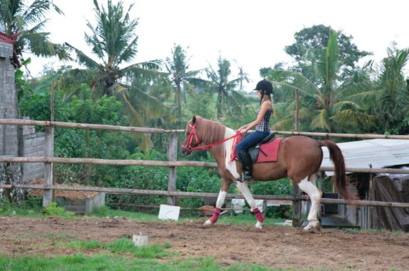 Horse Riding Kuda P Stables Bali