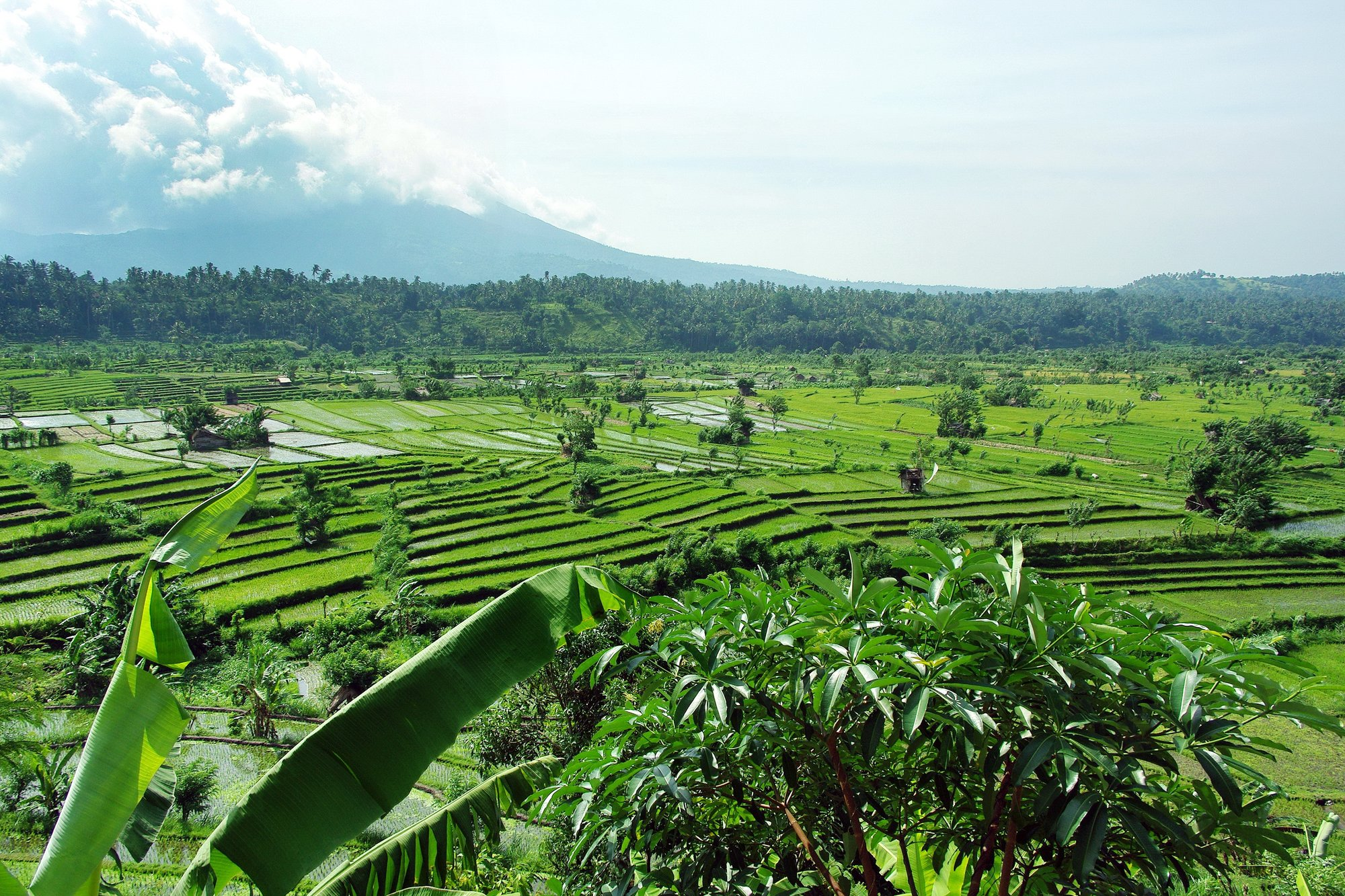 Top 10 Must-Do's in Bali