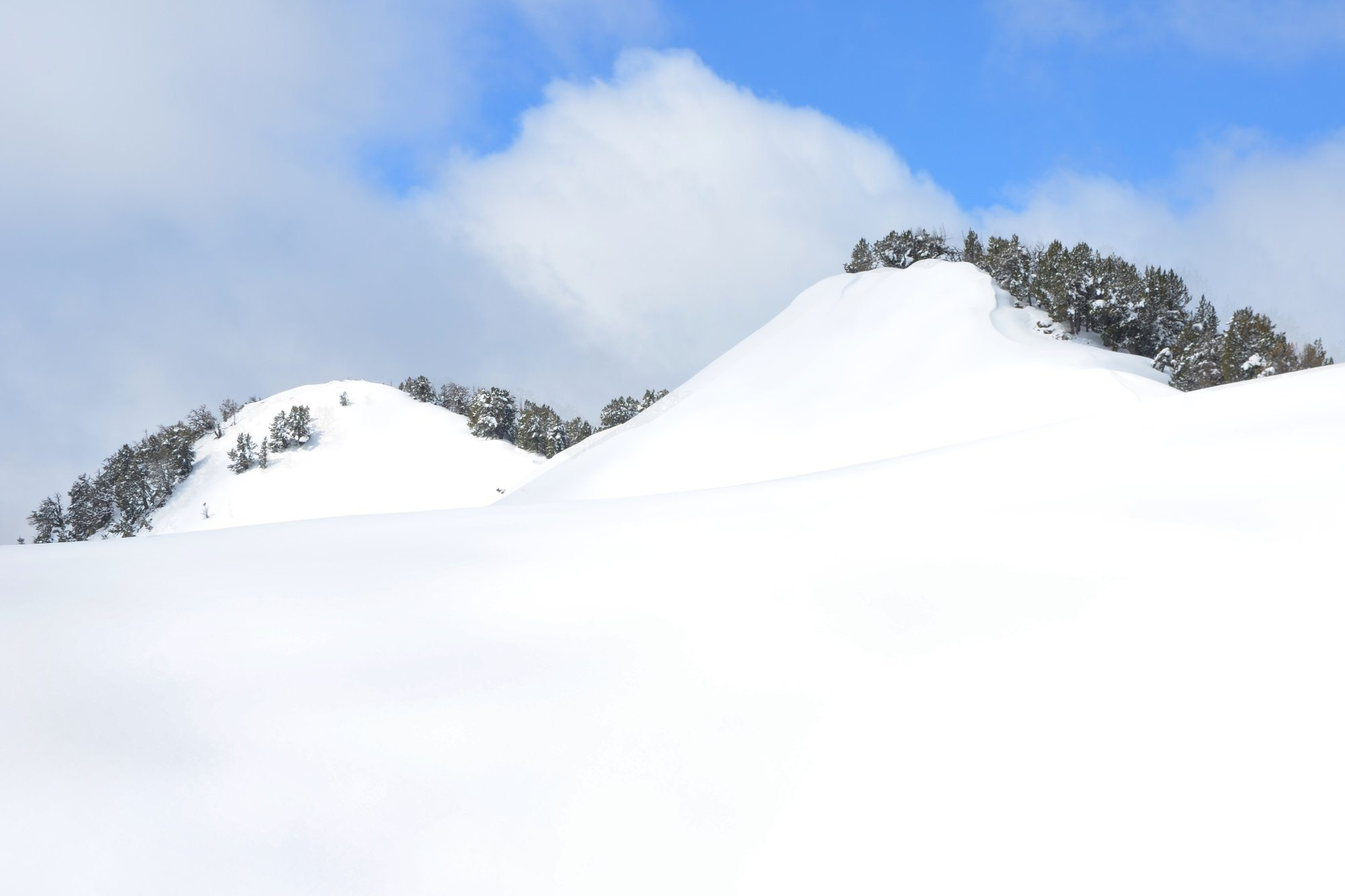 When's The Best Time to Get a Powder Ski Fix in Niseko?