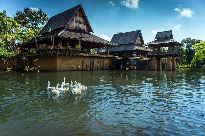 Howie's Homestay Pond | Chiang Mai, Thailand