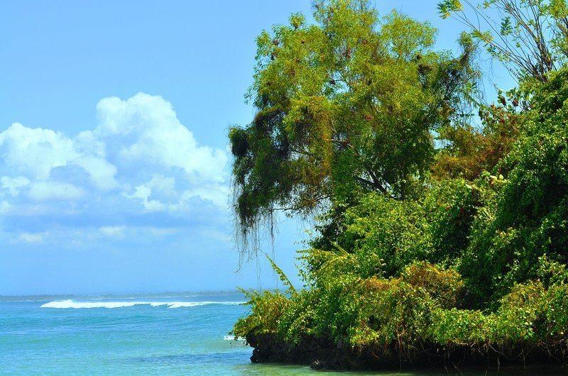 Improve Surfing Nusa Dua Beach Bali
