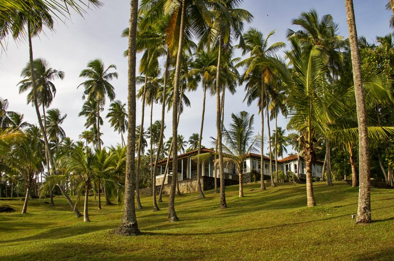 Claughton House Gardens | Dickwella, Sri Lanka