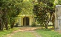 Coconut Grove Pathway | Koggala, Sri Lanka