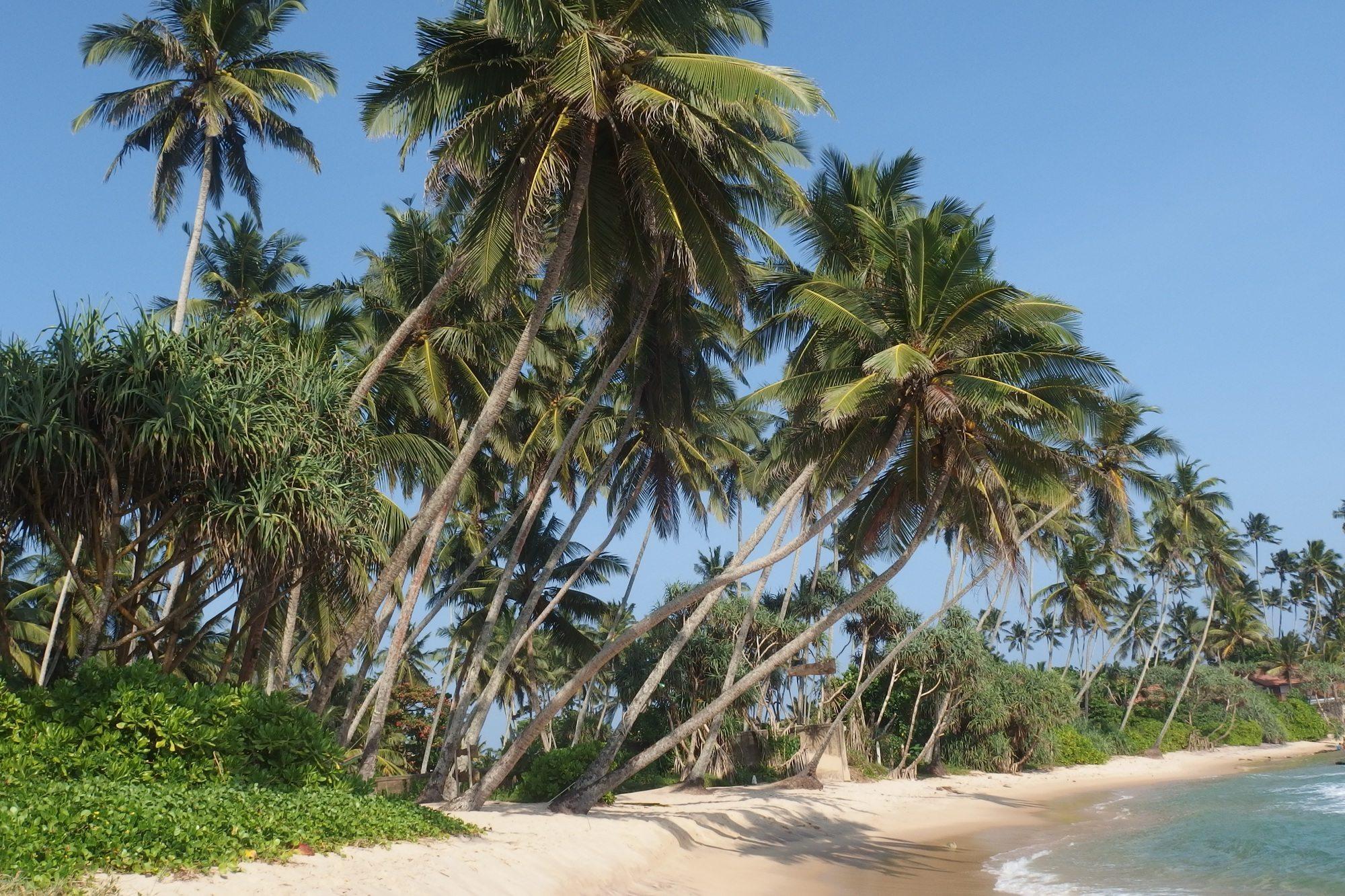 Beach Koggala Sri Lanka