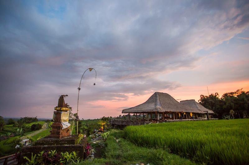 Gong Jatiluwih Restaurant - restaurants in Tabanan, Bali