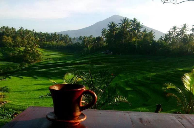 Warung Tepi Sawah - restaurants in Tabanan, Bali
