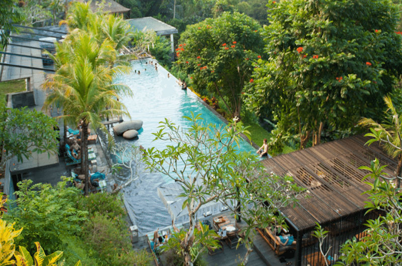 Bali Ubud Jungle Fish Pool