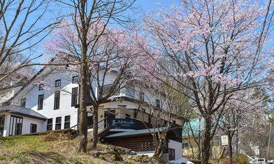 Altitude Hakuba Building Area | Hakuba, Nagano