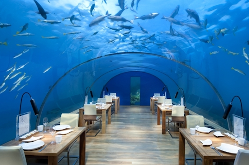 Maldives Conrad Ithaa Undersea Restaurant
