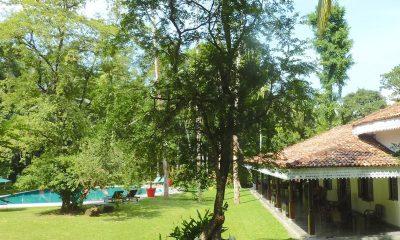 Villa Sepalika Gardens and Pool | Talpe, Sri Lanka