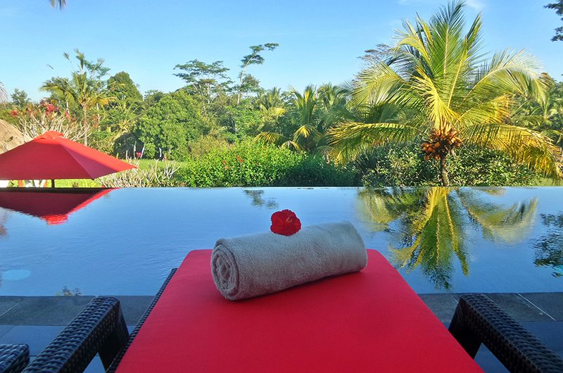 Villa Passion Swimming Pool | Ubud, Bali