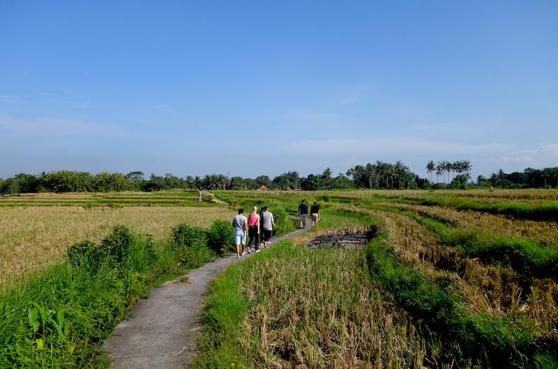 Bali Tabanan Villa Sungai Village Walk