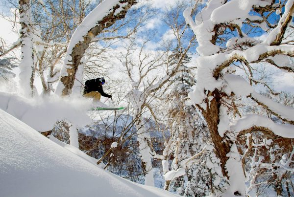 Our Year Round Guide To Weather In Niseko Ministry Of Villas