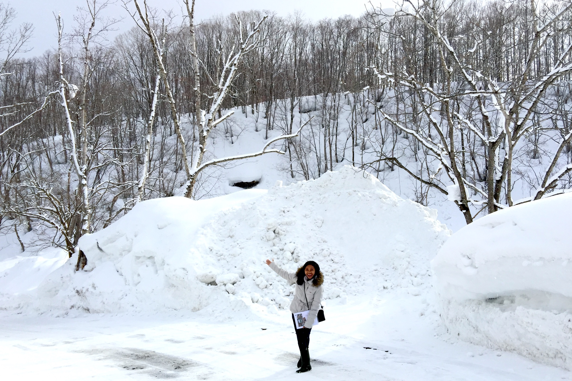 Our Year Round Guide to Weather in Niseko
