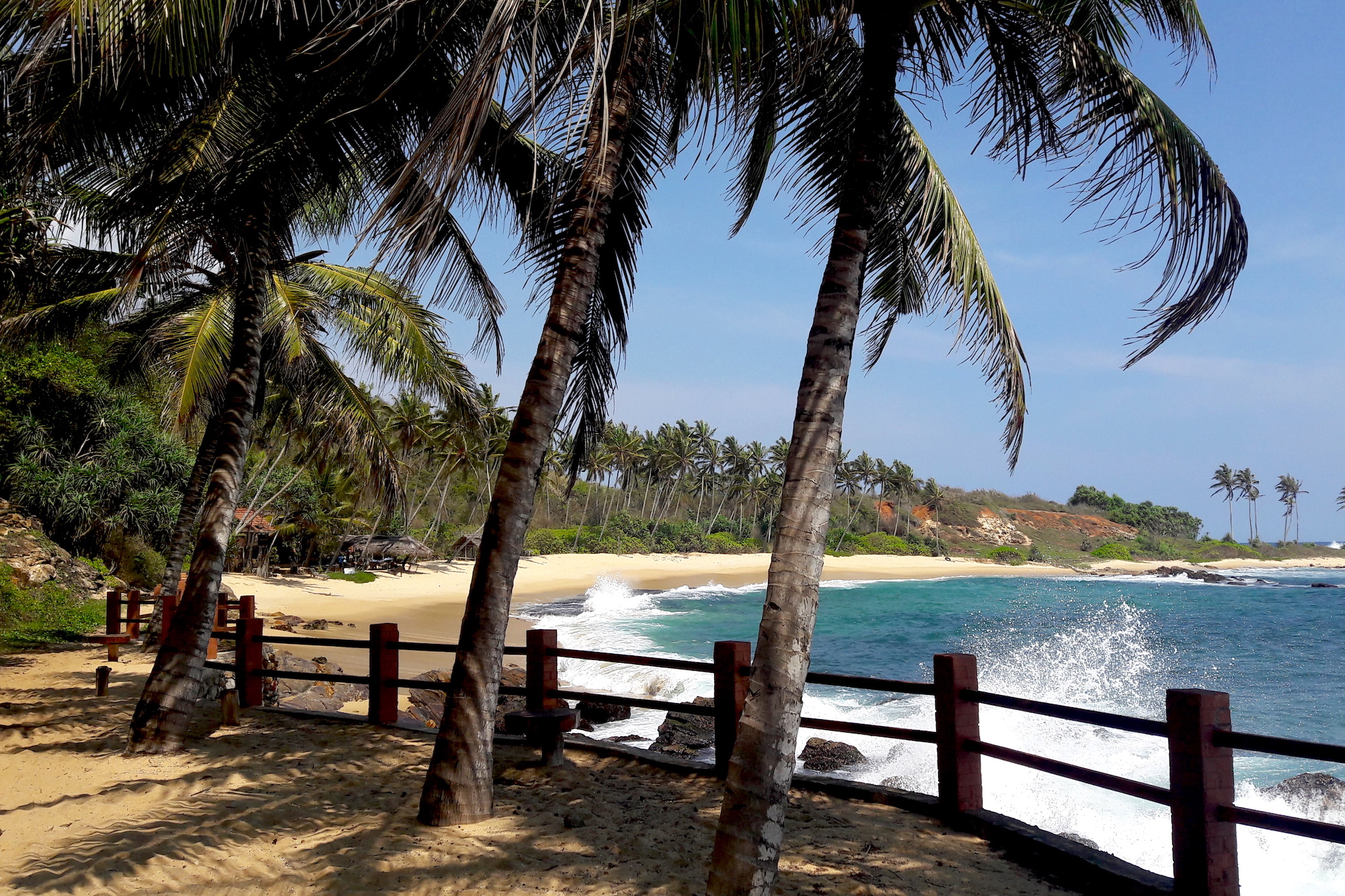 How to Get to and Around Sri Lanka