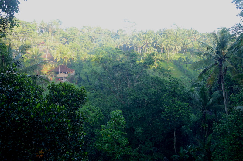 Bali Ubud Villa Samaki Views