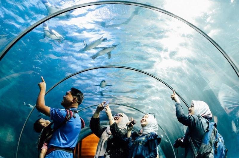 Underwater World   Langkawi, Malaysia